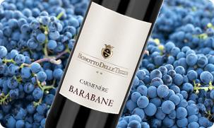 Barabane Carmenère Bonotto - Veneto