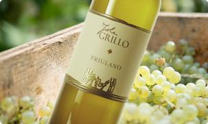 Friulano Iole Grillo Friuli Venezia Giulia