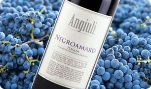 Negroamaro Angiuli Donato Puglia